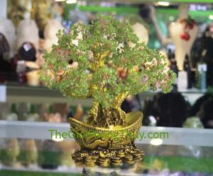 Cây tài lộc cẩm lảm đế nén vàng FKC075