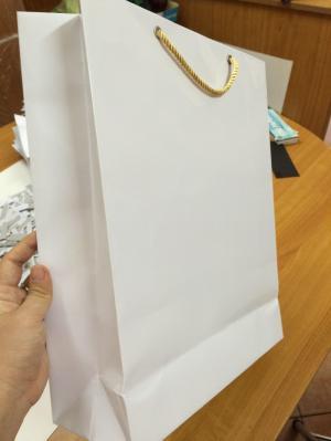 Túi giấy bán lẻ cho công ty, túi giấy quà...
