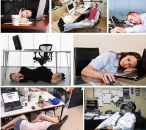Ghế ngủ văn phòng 560.000
