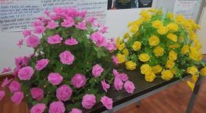 Thành phẩm hoa giấy lụa