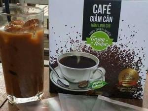 Cafe giảm cân Nấm linh chi