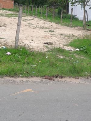 Đất 10m x 50m Mặt Tiền Đường Nhựa Nguyễn Thị Rành Xã Nhuận Đức Củ Chi