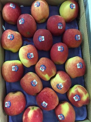 Bán trái cây nhập khẩu