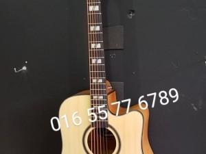 Đàn guitar acoustic mới tại Hà Nội