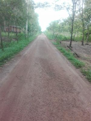 Hiện nay gđ đang cần bán lô đất trắng 65ha tại Lộc Ninh, Bình Phước
