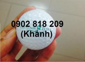 Cung cấp bóng golf và in logo lên bóng golf làm quà tặng
