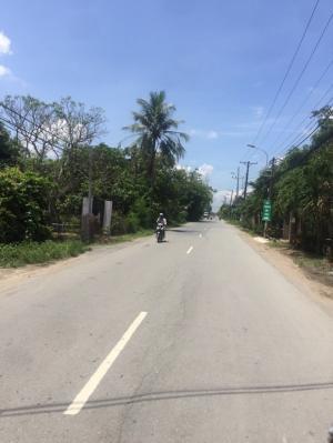 1586m2 đất 1,25 tỷ đường Nguyễn Văn Thời, Quy...
