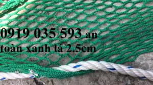 Lưới che chắn hàng hóa bao che container 20 40