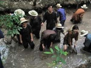 Tour Tiền Giang - Bến Tre khám phá miệt vườn (CTY DL VIỆT NHẬT)