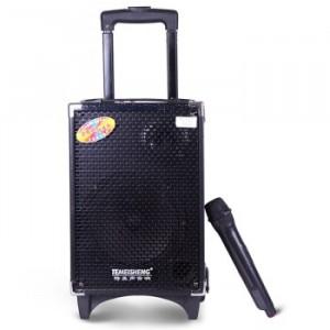 Loa Kéo TEMEISHENG Q8S BASS 8 inch ,Công suất 100W Tặng Kèm 2 Mic - MSN181217