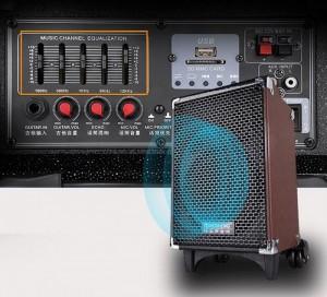 Loa Q8 sử dụng củ loa Bass 8 inches, được sản xuất trên dây chuyền hiện đại, cho công suất và chất lượng âm thanh cực kì tuyệt vời. Khi hoạt động tối đa, loa có thể đạt công suất lên đến 80W, đủ sức hoạt động ngoài trời trong bán kính trung bình.