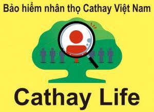 Quản lý nhóm kinh doanh Cathay Life Việt Nam, trưởng nhóm kinh doanh bảo hiểm nhân thọ