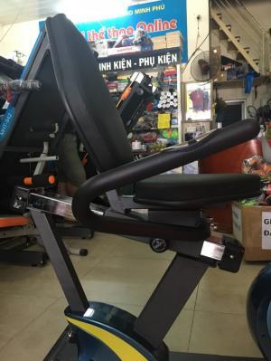 Xe đạp tập phục hồi chức năng Royal-571D