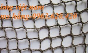 Lưới an toàn các công trình xây dựng, lưới Nhật