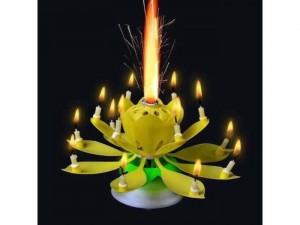 Nến sinh nhật 3D