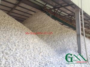 Cung cấp phụ gia trong ngành sản xuất cám thức ăn chăn nuôi Việt Nam