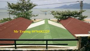 Bán tấm lợp sinh thái tại Hà Nội