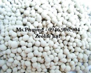 Cung Cấp Zeolite hạt, bột