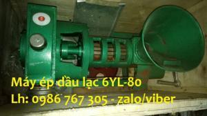 Cung cấp máy ép dầu trục vít 6YL-100, công suất 100kg/h giá rẻ
