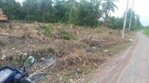 Đất thổ cư xây tự do 100m2 chỉ 260 triệu, sổ hồng riêng, đường lớn 12m