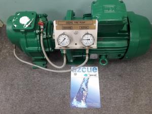 Thanh lý gấp 2 máy bơm Azcue chính hãng chưa qua sử dụng