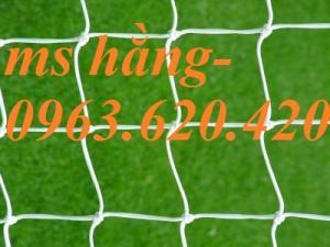 Lưới an toàn, lưới bao quanh sân bóng, lưới leo giàn cây