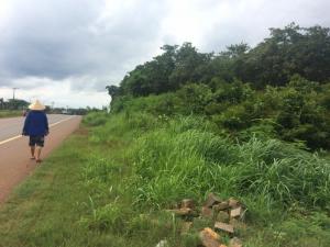 Bán Đất Mặt Tiền Quốc Lộ 14 ở Bù Đăng Tỉnh Bình Phước