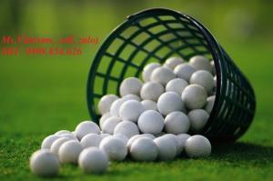 Giỏ Đựng Banh Golf Bền - Đẹp - Giá Tốt