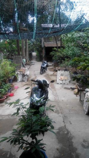 Bán đất cặp sát lộ đường Tôn Đức Thắng, Thị Xã Tân Châu, tỉnh An Giang