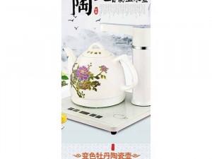 Bếp điện thông minh tích hợp vòi bơm