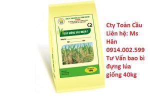 Bao lúa giống 40kg in ống đồng