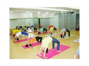 Tham tập yoga