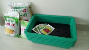 Combo trồng rau sạch tại nhà
