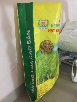 Bao PP đựng lúa giống