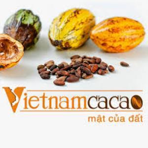 Bán hàng tại quầy Cacao sữa