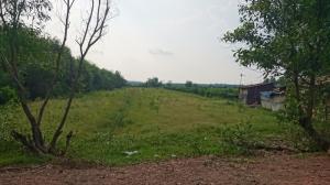 Cho thuê đất nông nghiệp ở kênh Xáng, gần cầu An Hạ, h.Hóc Môn, Tp.HCM.