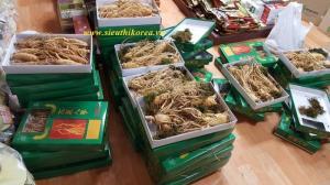 Nhân sâm tươi Hàn Quốc 5 củ/kg