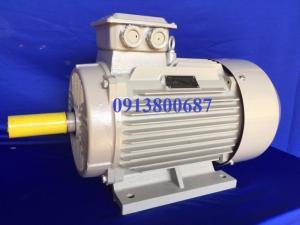 động cơ motor Australia (ÚC)