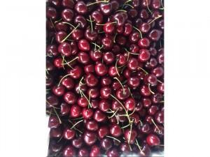Cherry tươi ngon