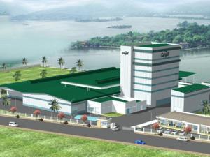 Cần tiền đầu tư bán đất TL 852, Tân Dương, Lai Vung, Đồng Tháp. Diện tích siêu lý tưởng
