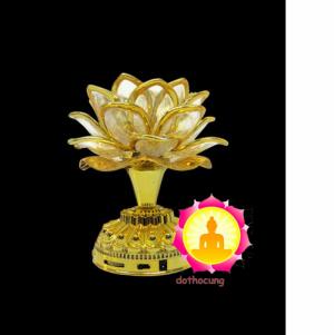 Đèn Sen Vàng Có Niệm Phật