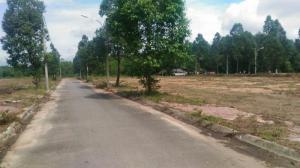 Bán đất biệt thự thị trấn Phú Mỹ 12*18  TC 100%, SHR.
