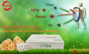 Tăng cường hệ miễn dịch, nâng cao sức đề kháng của cơ thể.