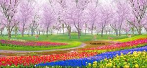 Tranh gạch men vườn hoa Kích thước: 120x180cm Nhận làm theo kích thước yêu cầu Liên hệ: 0972.449.489 Website: Noithat89.vn