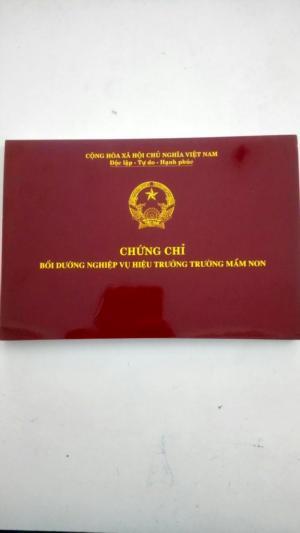 Tìm Lớp Học Hiệu Trưởng Mầm Non Tại Hồ Chí Minh