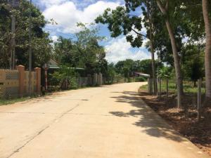 Ocean land Đảo Ngọc cách Nguyễn Trung Trực chỉ 2 phút đi xe.