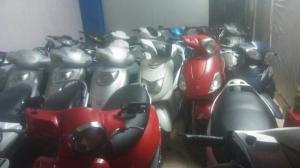Cho thuê xe máy các loại giá hợp lý tại hải phòng
