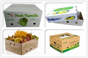 sản xuất thùng carton đựng trái cây xuất khẩu