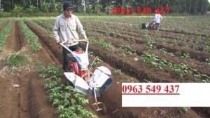 Máy xới đất nông nghiệp, máy làm đất trâu vàng 12 chức năng, máy xới đất lên luống xạc cỏ