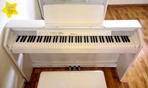 Cho thuê đàn piano Quận 11